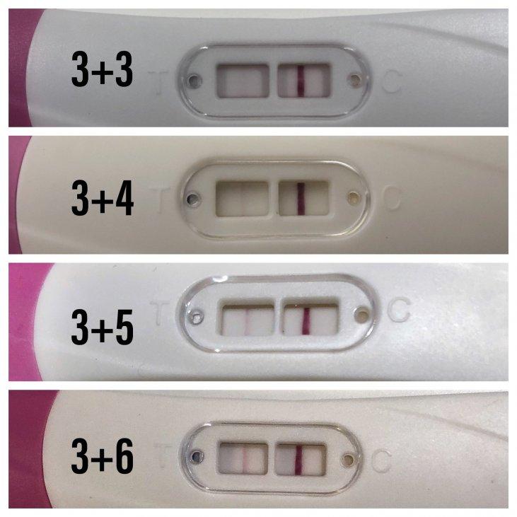 Graviditetstest negativ 🎖▷ Hva