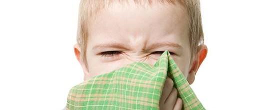 Allergi hos små børn