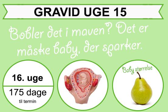 Gravid uge 15 - Mærker du liv? | Min-Mave.dk