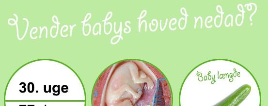 Gravid uge 29: Alt du skal vide om mor & baby i denne periode
